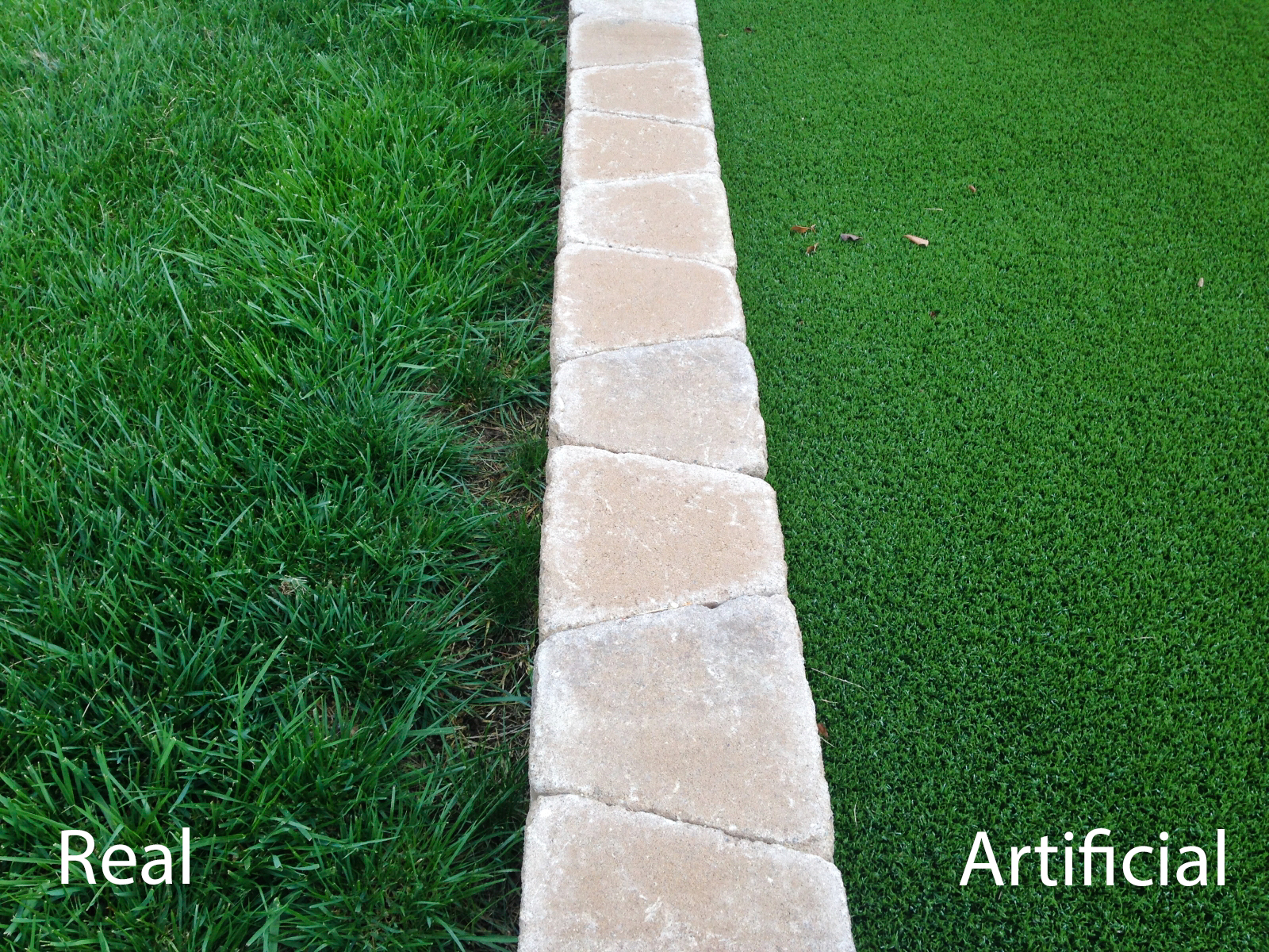 Real Vs Artificial Turf