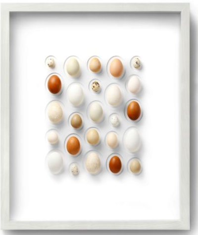 Egg mosaic from Pheromone by Christopher Marley
