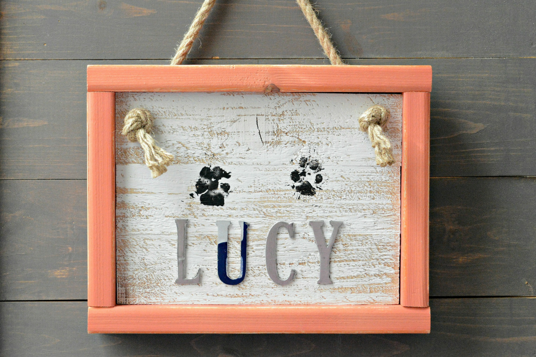 How To Make A Darling Paw Print Home Decor Sign | Final Project